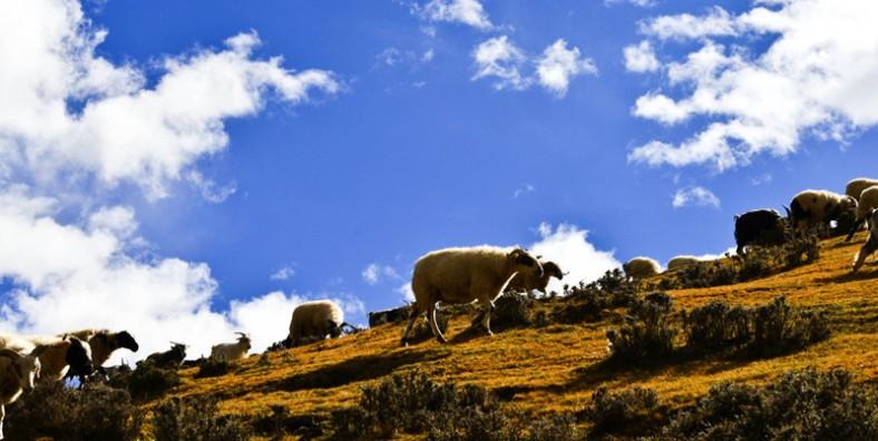 22 Days Northwestern Tibet Overland Tour