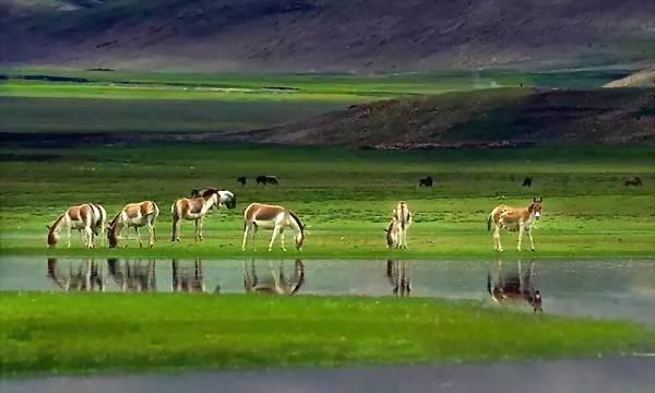 Duoba Lake in Bainang County, Shigatse