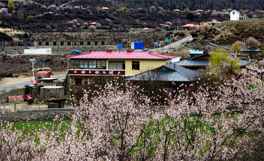 Geni Village in Bome County, Nyingchi