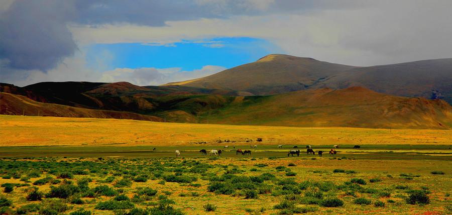 Lake Manasarovar, Ngari Tibet-03