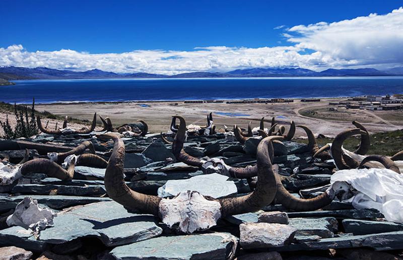 Lake Manasarovar, Ngari Tibet-14