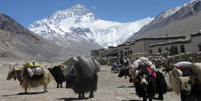 11 Days Best Tibet Tour with Mount Everest Adventure