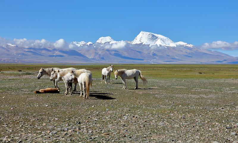 Kailas Range in Tibet