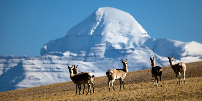 14 Days Tibet-Nepal Overland Tour with Saga Dawa Festival and Mount Kailash