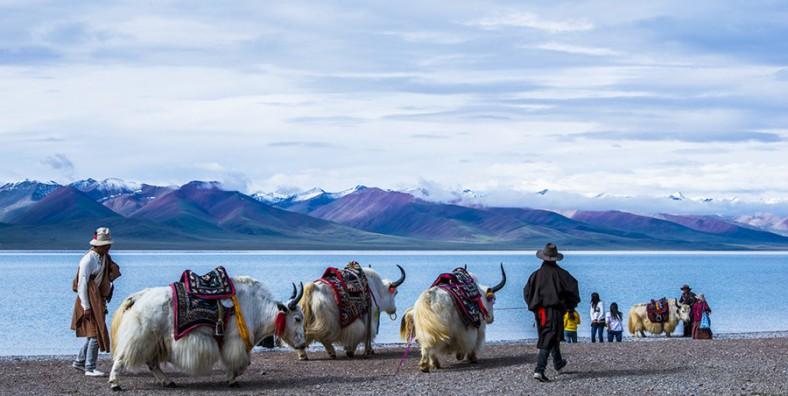 2 Days Namtso Lake Group Tour from Lhasa